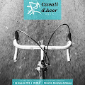 CAVALL d´ACER