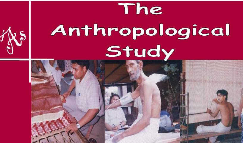 Anthropological Study of Workers, Occupational Health, Public Health, Textile Workers