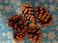 pine cones, Christmas, craft, snowflakes, snowflake tablecloth