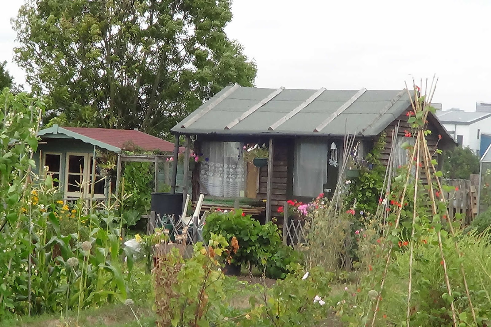 ... Your Own Shed With Wooden Garden Storage Shed Plans | Shed Plans