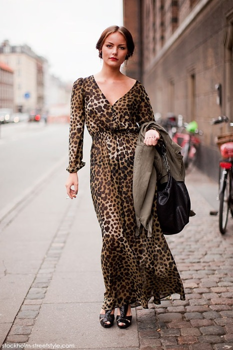 The Modern Sophisticate: Leopard Print Maxi Dress