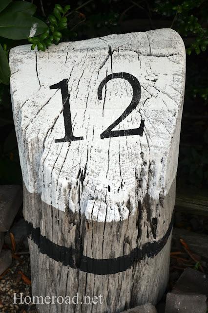 12+stump.jpg