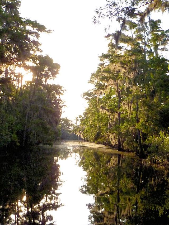 canal in Lafitte