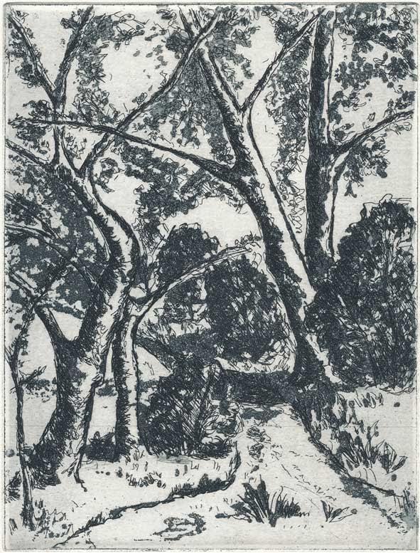 Roswitha Albrecht: Bäume im Frühling, Kaltnadelradierung, Reservage, 2014