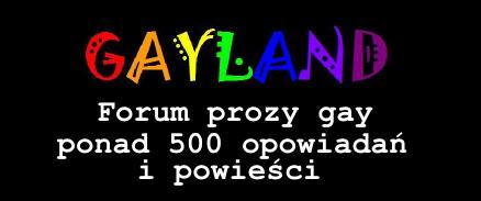 https://gayland.fora.pl/