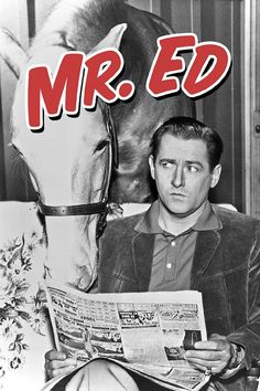 Mr. Ed Tries to Decipher the News