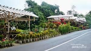 http://vilaistanabungavilage.blogspot.com/2014/07/taman-bunga-cihideung-vila-istana-bunga.html