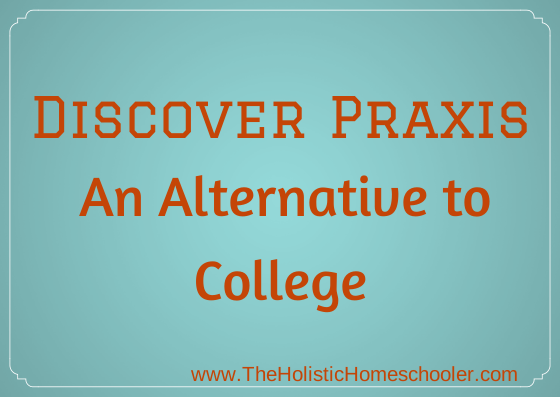 Praxis is an alternative to college for kids who either don't want to attend or want to take a gap year off between high school and college.