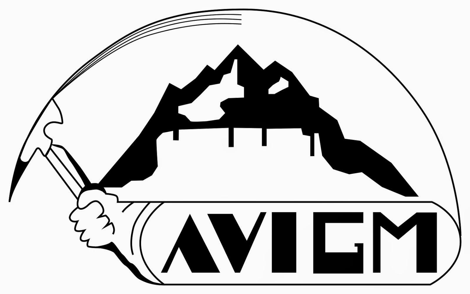 Asociación Venezolana de Instructores y Guías Profesionales de Montaña