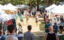Hackett Park Festival - August 18th + 19th 2018