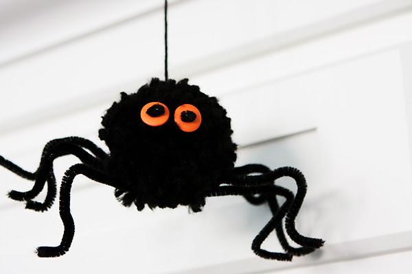 Araña pompón 3