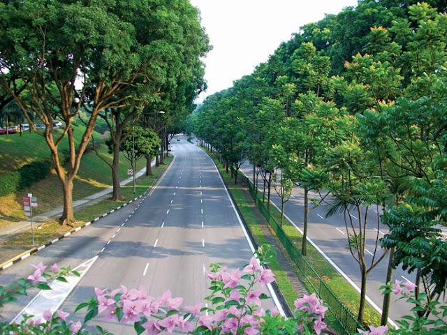 Hà Nội chuẩn bị xây công viên và hồ điều hòa khu đô thị mới Cầu Giấy