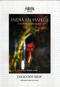 INDIA EN HAIKUS