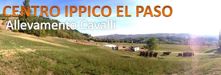 """Centro Ippico  """"EL PASO"""""""