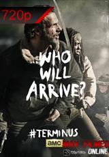 Assistir Série The Walking Dead 5×03 Dublado Online