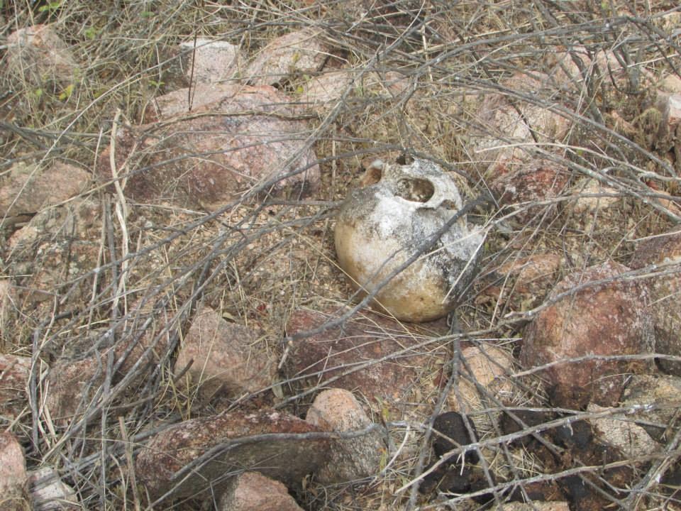Senhora Hort Ncia Que Residia No Distrito De Cacimbinha Zona Rural