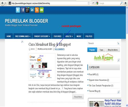 peureulak blogger