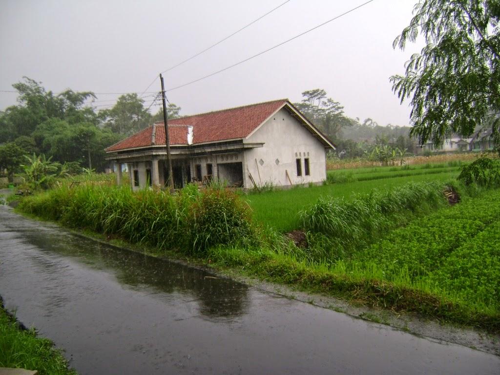 Jual Tanah Kebun di Temanggung