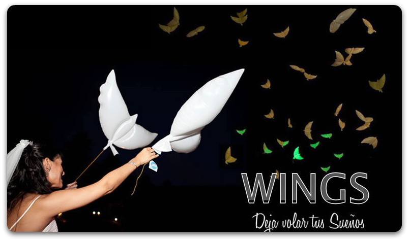wings deja volar tus sueños (eventos de bodas)