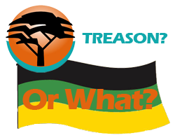 fnb, treason, anc flag graphic image