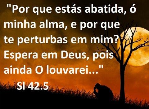 Salmo 42.5