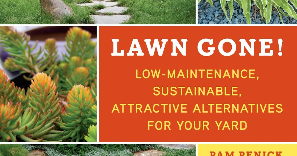 where to purchase low maintenance