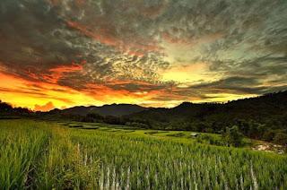 طبيعة ساحرة: صور رائعة للطبيعة وكانها مرسومة بألوان زيتية 2.jpg