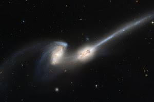 NGC 4676