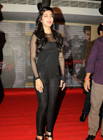 Yevadu Mobile App Launch Event Sruthi Hassan Photos