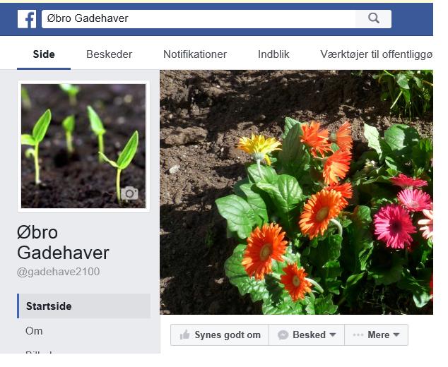 Find Øbro Gadehaver på Facebook