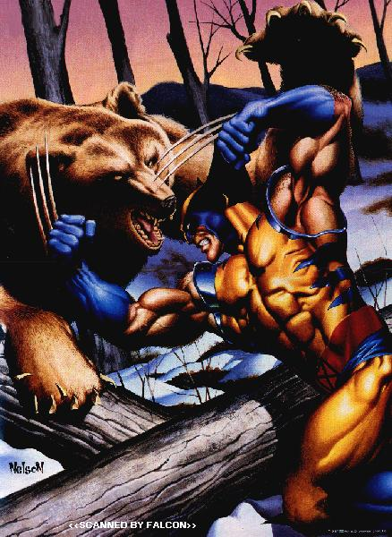 The Dork Review Wolverine Vs Bears