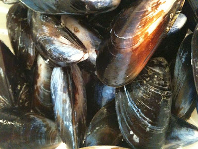 cleaned mussels