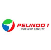 Logo PT Pelabuhan Indonesia I (Pelindo I)