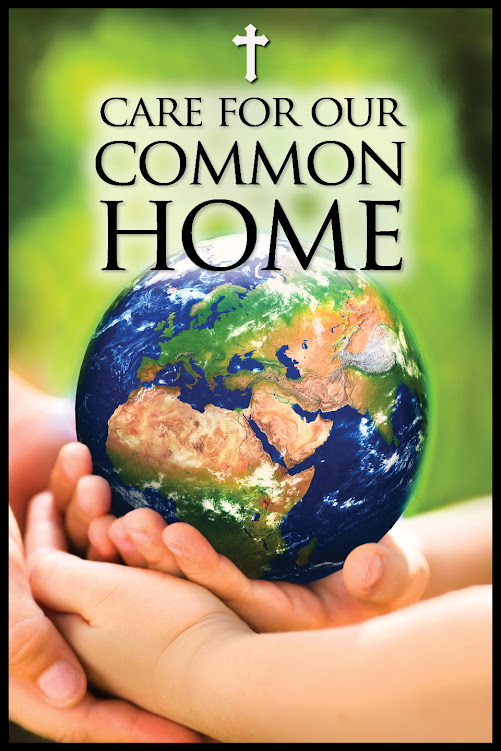 Care for our Common Home