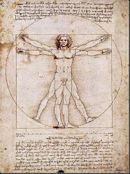 Leonardo da Vinci: Canón