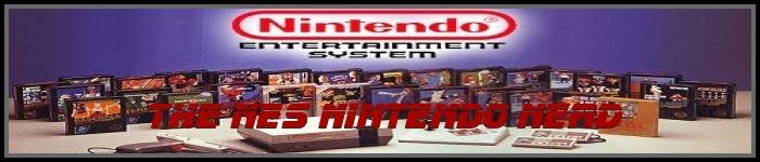 NES Nintendo Nerd