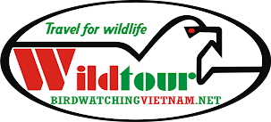 Vietnam Wildlife Tours & Research