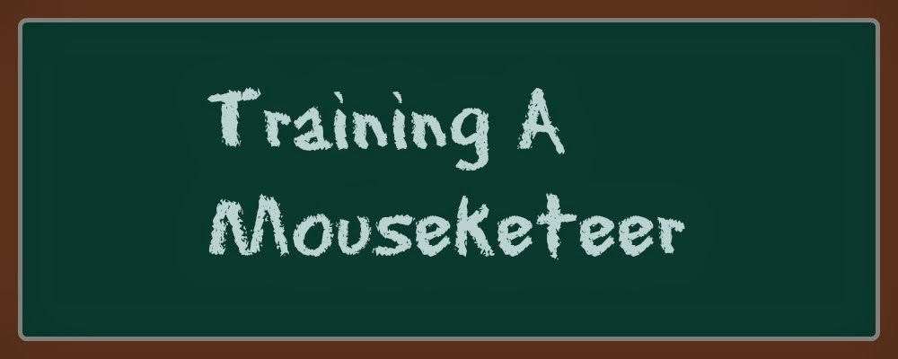 Training A Mouseketeer