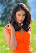Illeana hot in Devudu Chesina Manusulu Movie-thumbnail-3