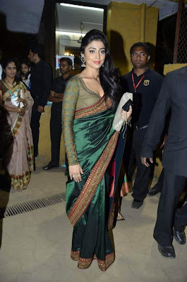 South Actress Shriya Satan in Hot Saree Blouse Photos