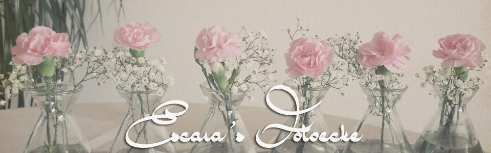 Escara's   Fotoprojekte