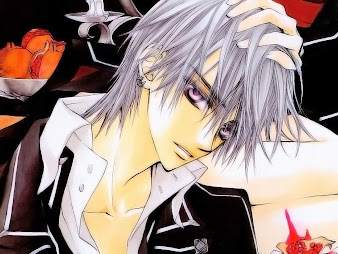 #30 Vampire Knight Wallpaper