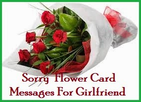 Sorry msg for gf