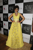 Ileana Ramp Walk Stills at IIJW 2015-thumbnail-18