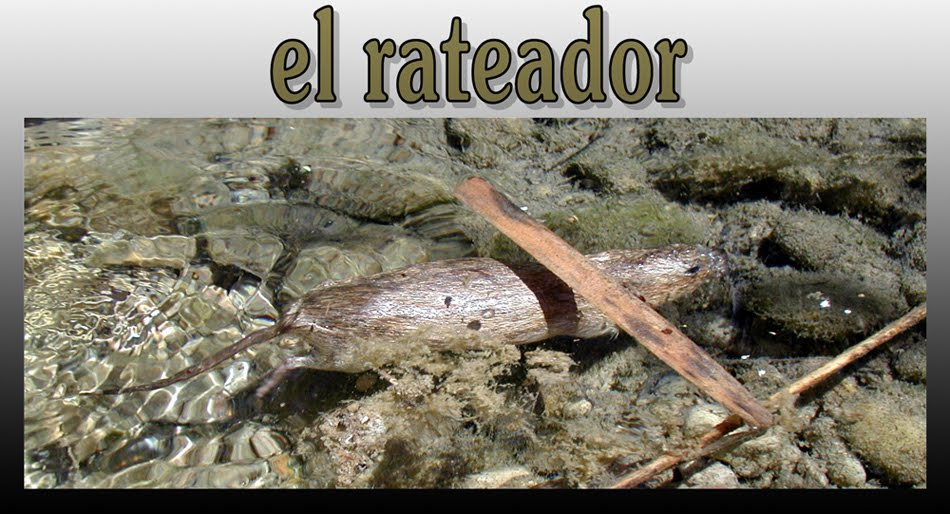EL RATEADOR