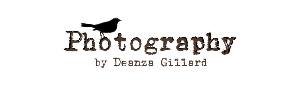Deanza Gillard photography