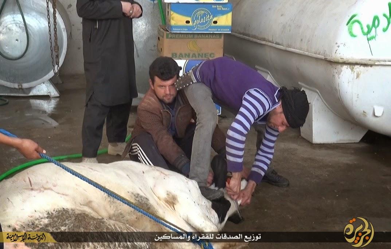 (بدون قطرة دم واحده) دولة الخلافة الاسلامية  11123