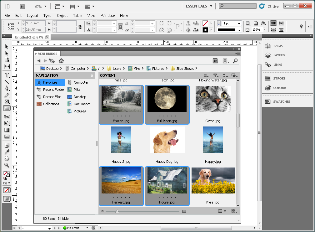 Adobe InDesign CS5 full screenshot