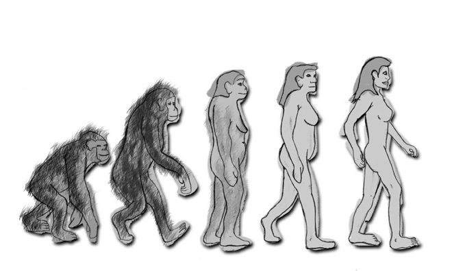 Evolución de la mujer