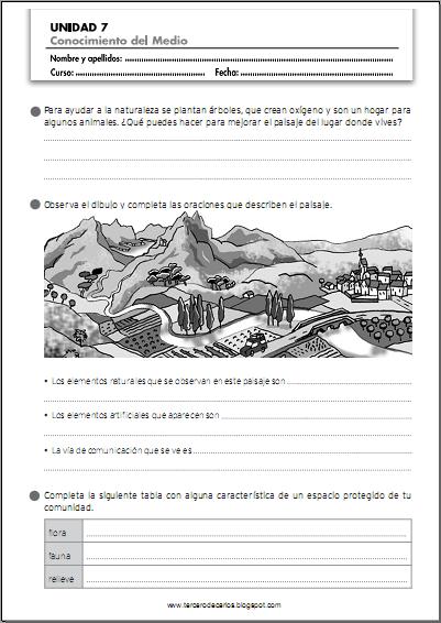 http://www.primerodecarlos.com/TERCERO_PRIMARIA/enero/Unidad_7/cono/fichas/cono6.pdf